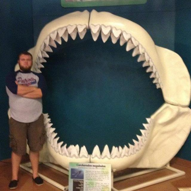 Will, next to a bunch of teeth.