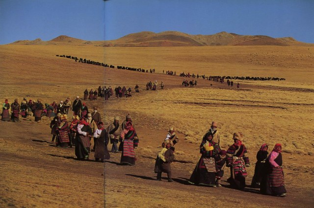 Tibet-Nomachi-Nomads-in-Nagchu