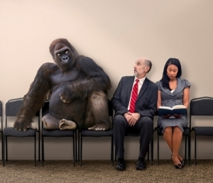 800-lb-gorilla