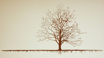 shallow_roots_aric