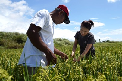 smallholder-farming-philippines
