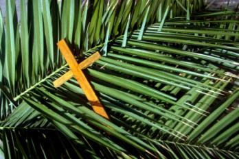 palm-sunday